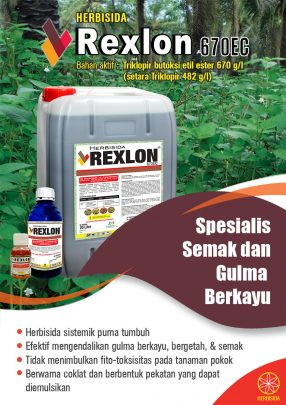 004_Rexlon